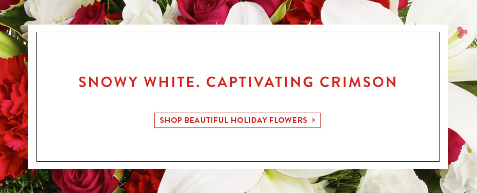 Snowy White. Captivating Crimson. Shop Beautiful Holiday Flowers!